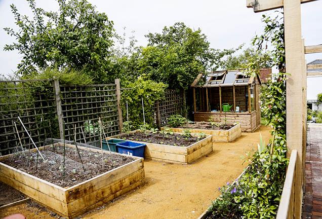 Trend-setting Garden Design