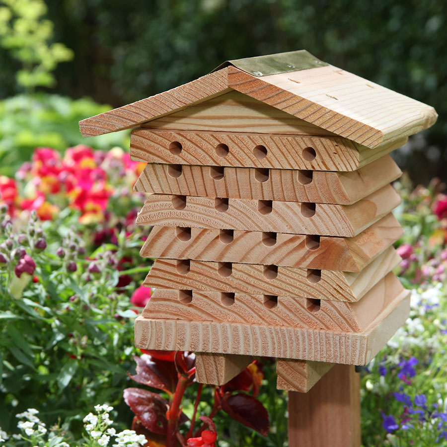 Solitary bee hive greenart for Hive homes